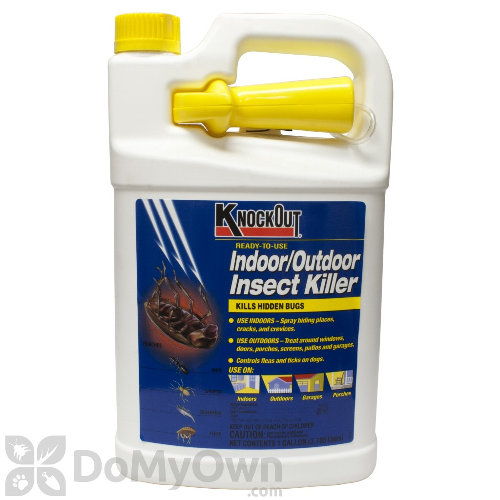 Knock Out Indoor/Outdoor Insect Killer