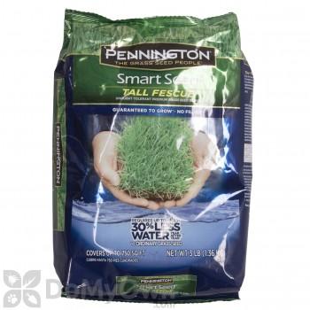 Pennington Smart Seed Tall Fescue Blend