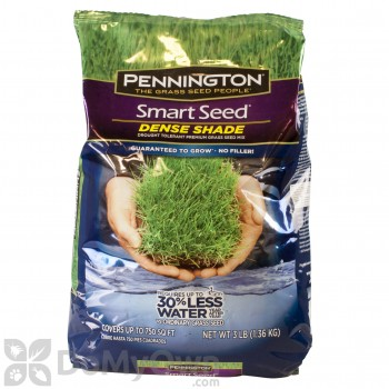 Pennington Smart Seed Dense Shade Grass Seed Mix