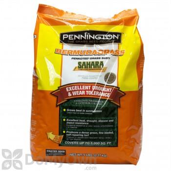 Pennington Sahara Bermudagrass Penkoted Grass Seed