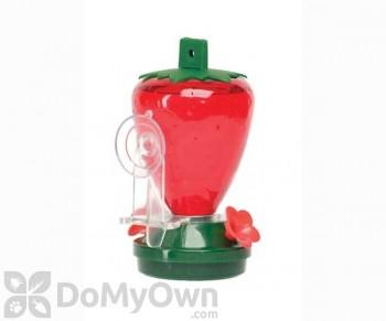 Artline Strawberry Window Hummingbird Feeder 12 oz. (5558)