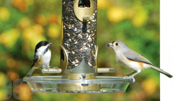 Aspects Round Bird Seed Tray 8.5 in (050)