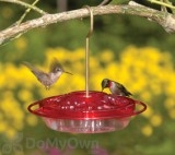 Aspects Little Fancy Rose Hummingbird Feeder (382)