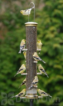 Aspects Thistle Tube Antique Brass Quick Clean Base Bird Seed Feeder Large (403)