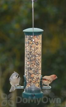 Aspects Quick Clean Spruce Bird Feeder (422)