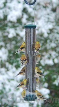 Aspects Quick Clean Spruce Nyjer Bird Feeder Large (428)