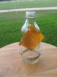 Best - 1 Replacement Bottle (BESTR8)