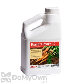 Brandt Uptake 12