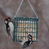 Droll Yankees Suet Bird Feeder (SFS)