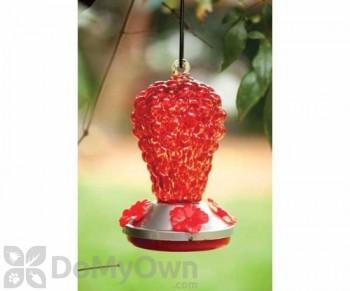 Evergreen Enterprises Red Glass Hummingbird Feeder (2HF040)