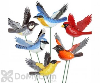 Exhart Audubon Birds Windy Wings Stakes Assorted (60018)