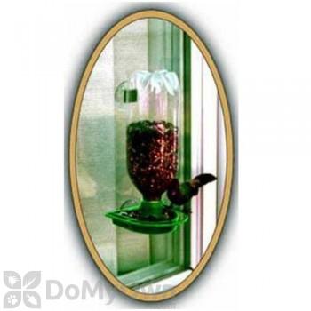 Gadjit Window Bird Seed Feeder Green (WP16137)