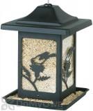 Homestead Bird on Thistle Bird Feeder (4582)