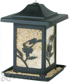 Homestead Bird on Thistle Bird Feeder (4582)