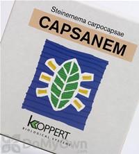 Koppert Capsanem (Steinernema carpocapsae)