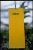 Koppert Horiver - Small Yellow Trap