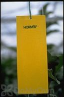 Koppert Horiver - Large Yellow Trap