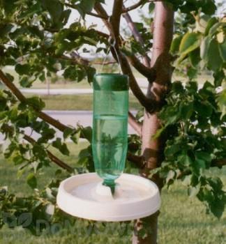 Molor Products Soda Bottle Bird Bath (MPG)
