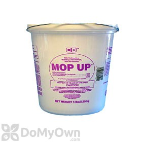 MOP UP Boric Acid Insecticide