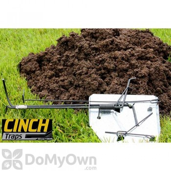 CINCH Traps Mole Trap