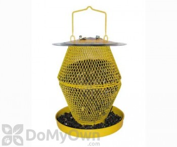 No / No Feeder Double Designer Sunflower Bird Feeder with Tray (389CS)