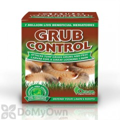 how to get rid of grubs in my grass