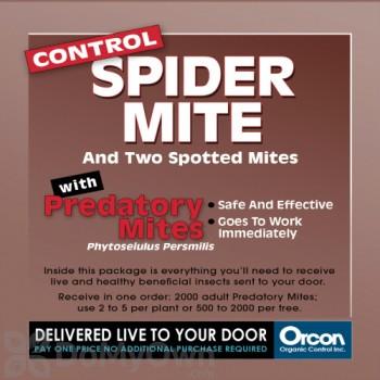 Orcon Predatory Mites (2000 live adults) (MI-C2000)