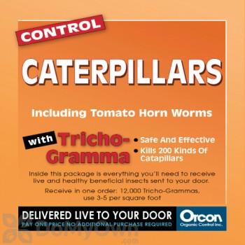 Orcon Control Caterpillars Trichogramma