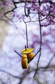 Panacea Black Fruit Stake Bird Feeder (83190)