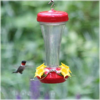 Perky Pet Top Fill Aster Hummingbird Feeder 16 oz. (122TF)