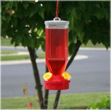 Perky Pet Lantern Design Bird Feeder 18 oz. (201)