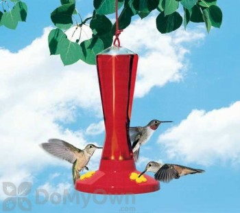 Perky Pet 3 Station Plastic Bird Feeder 8 oz. (211)