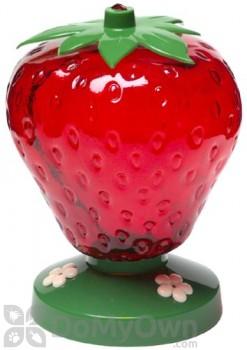 Perky Pet Strawberry Hummingbird Feeder 48 oz. (260)