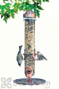 Perky Pet Copper 2 in 1 Bird Feeder 1 lb. (PP3852)