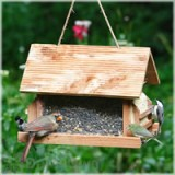 Perky Pet Lodge Bird Feeder 8 lb. (50153)