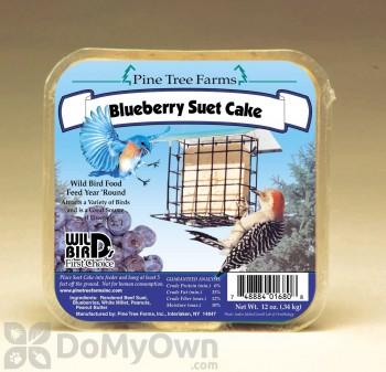 Pine Tree Farms Blueberry Suet Cake Bird Food 12 oz. (1680)