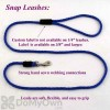 Soft Lines Small Dog Snap Leash - 1 / 4