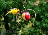 Songbird Essentials Heart Fruit Bird Feeder (SEHHHAPL)