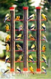 Songbird Essentials Finches Favorite Red 3 Tube Bird Feeder (SE324)