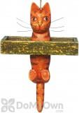 Songbird Essentials Orange and Black Box Cat Bird Feeder (SE3870131)