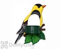 Songbird Essentials Goldfinch Window Bird Feeder (SE3870237)