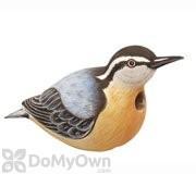 Songbird Essentials Nuthatch Bird House (SE3880041)