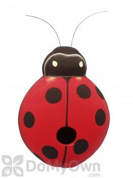Songbird Essentials Ladybug Bird House (SE3880043)