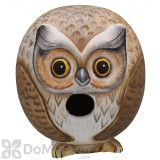 Songbird Essentials Owl Gord - O Bird House (SE3880065)
