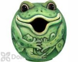 Songbird Essentials Frog Gord - O Bird House (SE3880072)