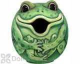 Songbird Essentials Frog Gord - O Bird House (SE3880072)