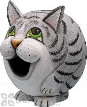 Songbird Essentials Grey Tabby Cat Gord - O Bird House (SE3880077)