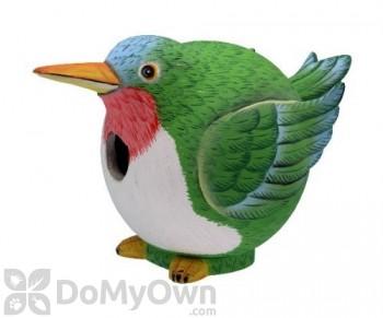 Songbird Essentials Hummingbird Gord - O Bird House (SE3880080)