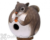 Songbird Essentials Squirrel Gord - O  Bird House (SE3880086)