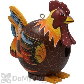 Songbird Essentials Rooster Gord - O Bird House (SE3880087)